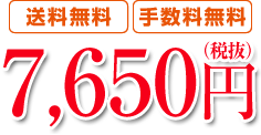 【送料無料】【手数料無料】7,650円(税抜)