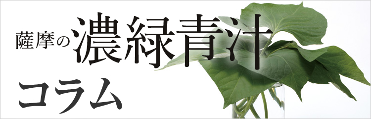 薩摩の濃緑青汁のコラム